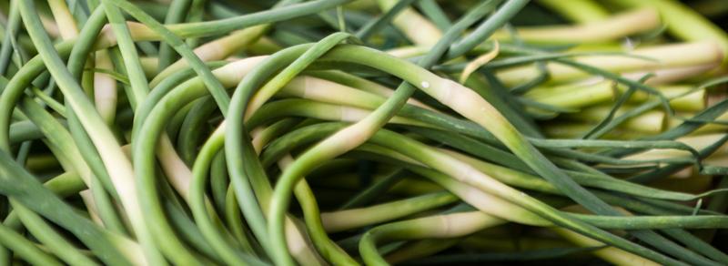 zolle d'aglio rosso di sulmona
